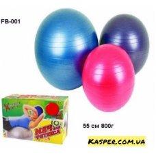 Мяч для фитнеса FB-001